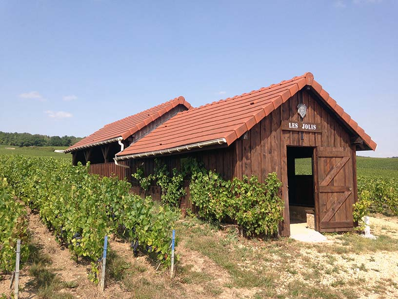 Loge Bollinger Tauxieres Mutry